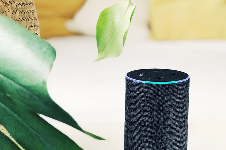 Smart Speaker Image