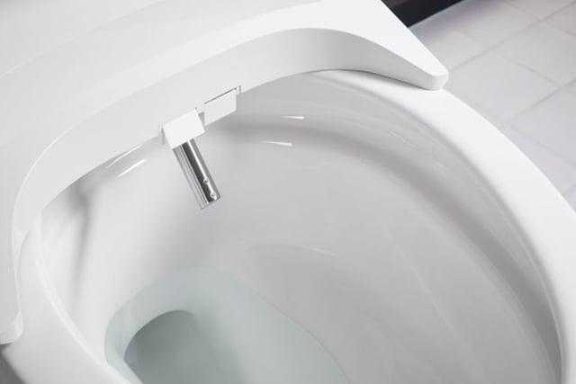 Bidet spray wand in toilet