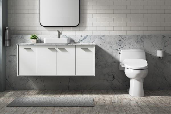 bathroom showing vanity and toilet